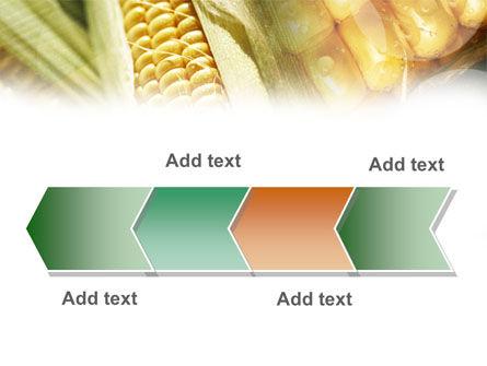 Maize PowerPoint Template Slide 16