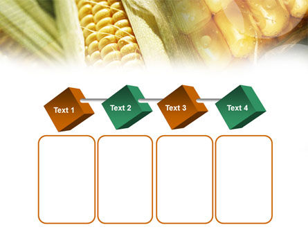 Maize PowerPoint Template Slide 18