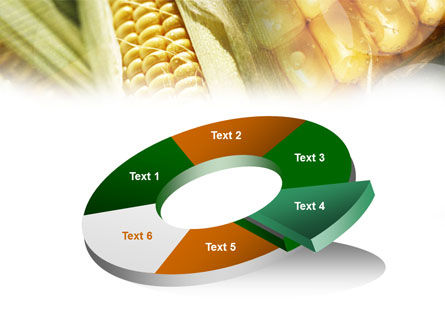 Maize PowerPoint Template Slide 19