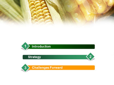 Maize PowerPoint Template Slide 3
