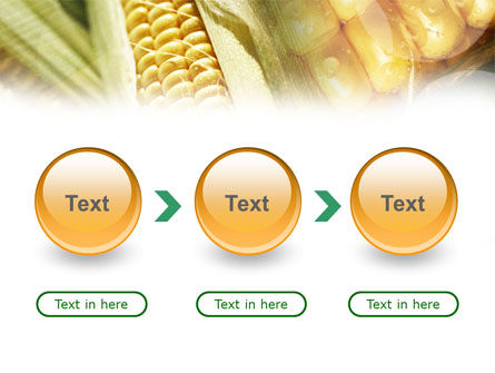 Maize PowerPoint Template Slide 5