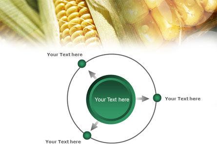 Maize PowerPoint Template Slide 7
