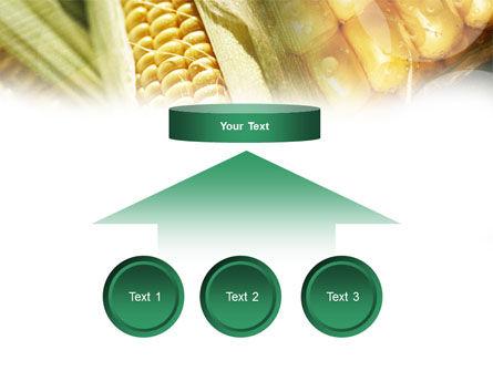 Maize PowerPoint Template Slide 8