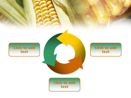 Maize PowerPoint Template Slide 9