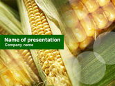Food & Beverage: Maize PowerPoint Template #00973
