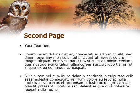 Owl PowerPoint Template, Slide 2, 00998, Animals and Pets — PoweredTemplate.com