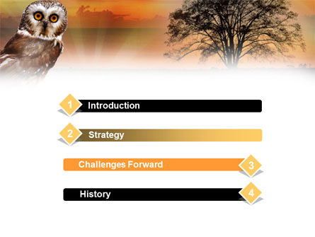 owl wallpapers for powerpoint - photo #21