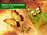 Nature & Environment: Butterflies On A Wood PowerPoint Template #01067