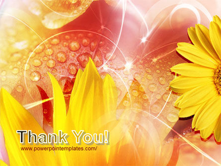 Yellow Petals On A Light Crimson Background PowerPoint Template Slide 20