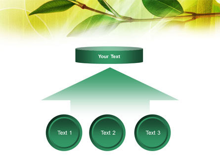 Green Stick PowerPoint Template Slide 8