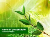 Nature & Environment: Green Stok PowerPoint Template #01084