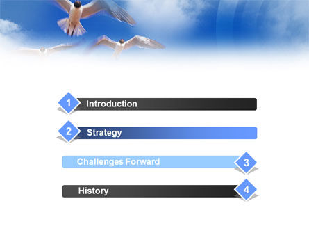 Seagull PowerPoint Template, Slide 3, 01094, Animals and Pets — PoweredTemplate.com