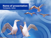 Animals and Pets: Zeemeeuw PowerPoint Template #01094