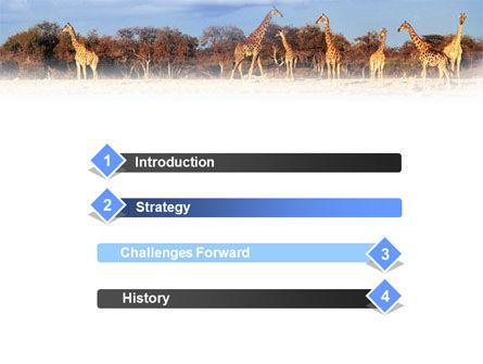 Giraffe PowerPoint Template, Slide 3, 01097, Animals and Pets — PoweredTemplate.com