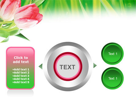 Light Pink Colored Tulips PowerPoint Template Slide 12