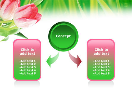 Light Pink Colored Tulips PowerPoint Template Slide 4