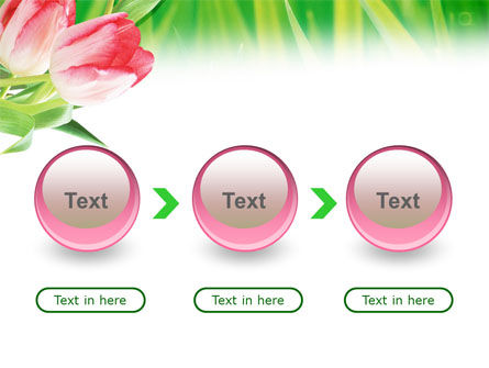 Light Pink Colored Tulips PowerPoint Template Slide 5