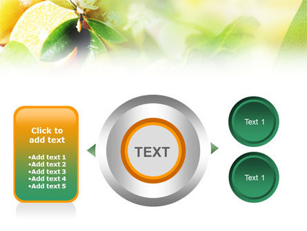 Orange And Salad PowerPoint Template Slide 12