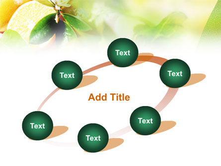 Orange And Salad PowerPoint Template Slide 14