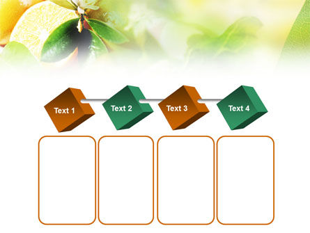 Orange And Salad PowerPoint Template Slide 18
