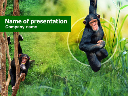 Animals and Pets: Modello PowerPoint - Apes #01140
