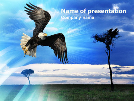 Animals and Pets: Bald Eagle PowerPoint Template #01147