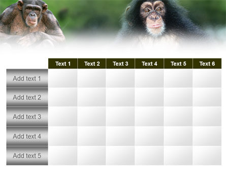 Baby Ape PowerPoint Template Slide 15
