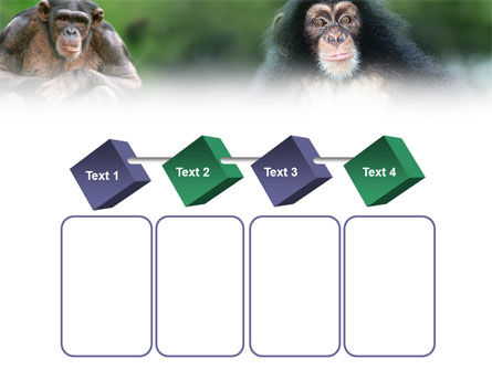 Baby Ape PowerPoint Template Slide 18