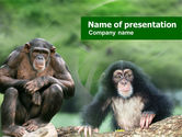 Nature & Environment: Baby Ape PowerPoint Template #01148