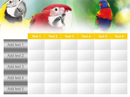 Parrot PowerPoint Template Slide 15