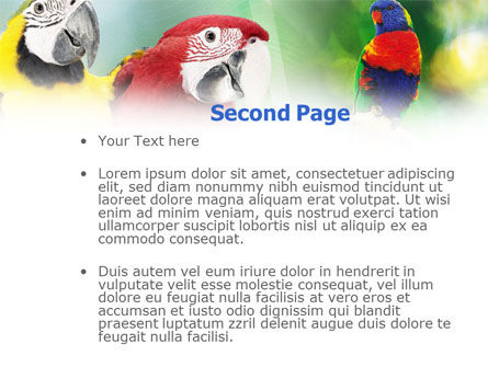 Parrot PowerPoint Template, Slide 2, 01150, Nature & Environment — PoweredTemplate.com
