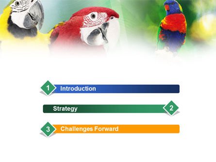 Parrot PowerPoint Template, Slide 3, 01150, Nature & Environment — PoweredTemplate.com