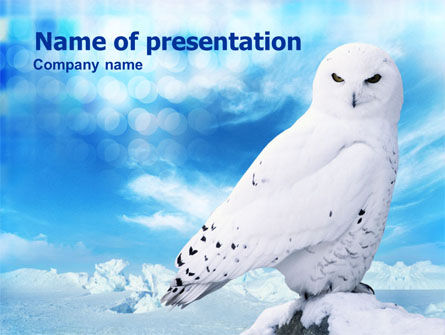 Animals and Pets: White Owl PowerPoint Template #01152