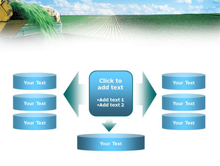 Pea Harvest PowerPoint Template Slide 13
