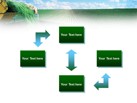 Pea Harvest PowerPoint Template Slide 4