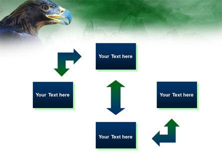 Golden Eagle PowerPoint Template, Slide 4, 01162, Animals and Pets — PoweredTemplate.com