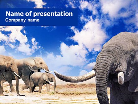Animals and Pets: Elephants PowerPoint Template #01166