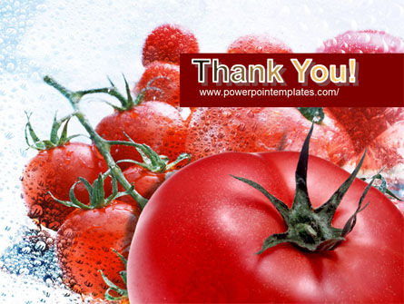 Tomatoes PowerPoint Template Slide 20
