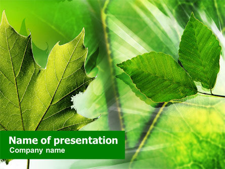 Nature & Environment: Leaves PowerPoint Template #01188