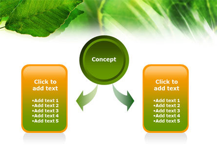 Leaves PowerPoint Template, Slide 4, 01188, Nature & Environment — PoweredTemplate.com