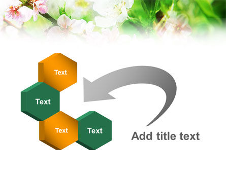 Blooming Cherry Tree PowerPoint Template Slide 11