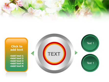Blooming Cherry Tree PowerPoint Template Slide 12