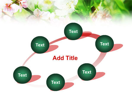 Blooming Cherry Tree PowerPoint Template Slide 14