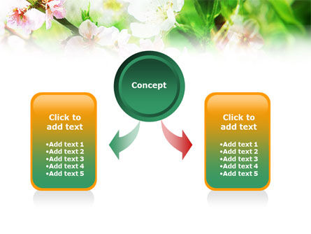 Blooming Cherry Tree PowerPoint Template, Slide 4, 01207, Nature & Environment — PoweredTemplate.com