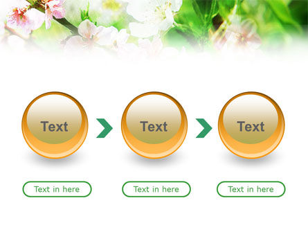 Blooming Cherry Tree PowerPoint Template Slide 5