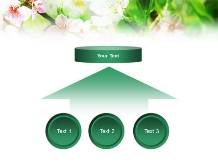 Blooming Cherry Tree PowerPoint Template Slide 8