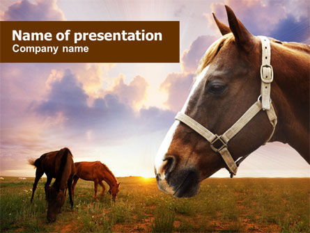 Horses PowerPoint Template, 01228, Agriculture — PoweredTemplate.com