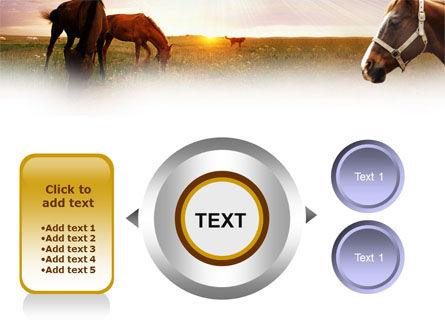 Horses PowerPoint Template Slide 12