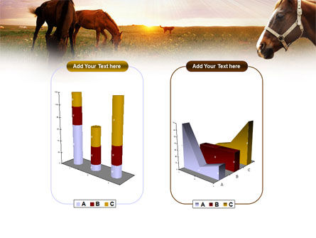Horses PowerPoint Template Slide 13
