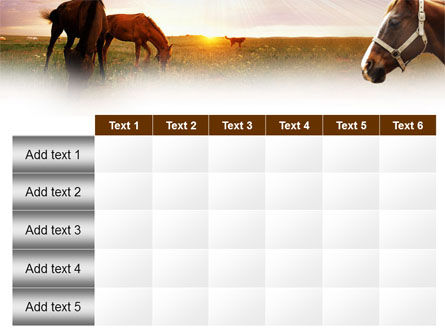 Horses PowerPoint Template Slide 15
